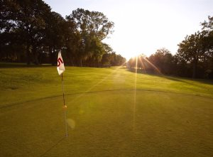 Green fee Golf du Coudray Montceaux
